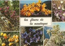 Fleurs. CPM. La Montagne En Fleurs. Multi-vues (6 Vues) (Gentiane, Crocus, Bouton D'or, Edelweiss, Rhododendron, - Sin Clasificación