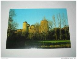 DEUX-SEVRES  - ECHIRE - Ruines Du Château Coudray-Salbart - France
