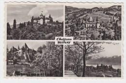 CP CARTE POSTALE SUISSE HELVETIA ....VAUD CHATEAU BLONAY - VD Vaud