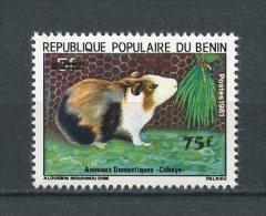 BENIN 1983  N° 580 ** Neuf  = MNH Superbe  Faune  Cobaye Fauna Animaux - Bénin – Dahomey (1960-...)