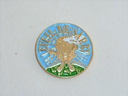 Pin's L EVEIL DE SARRY - Villes