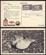 ASCENSION - TYPE DEAR DOCTOR - CHER DOCTEUR - PLASMARINE / 1955 CARTE POSTALE POUR LA FRANCE (ref DD2E) - Ascensione