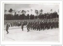 Photographie F.F.A Forces Françaises En Allemagne Défilé 14.Juillet 48 - Guerre, Militaire