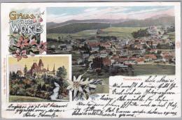 AK BE WORB 1903-11-16 UTZIGEN Totalansicht Foto Aeschbacher - BE Bern