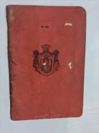 PASSEPORT PASSPORT REISEPASS  1924. KINDOM OF  SHS CROATIA SLOVENIA SERBIA   SENOVO  CONSULAT IN LONDON - Historical Documents