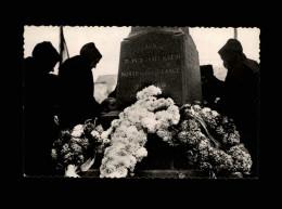 29 - ILE DE SEIN - Monument Aux Morts - Ile De Sein