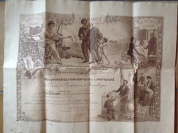 Mutualité  - Diplome  De Médaille D'or 1911 Illustré Par Hippolyte-Lucas - Assurance Vieillesse, Solidarité - Diplômes & Bulletins Scolaires
