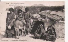 AFRIQUE OCCIDENTALE 232 CAMPEMENT MAURE (ANE ET BELLE ANIMATION) - Mauritanie