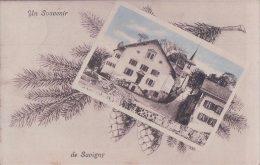 Souvenir De Savigny, Ecole (50808) - VD Vaud