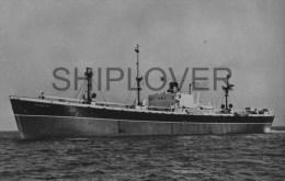 Cargo LEICESTER - Photo Ancienne Originale / Vintage Photo - Bateau/ship/schiff - Boats
