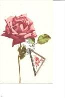 Roses ( CM De Saint-Marin De 1952 à Voir) - Rosas