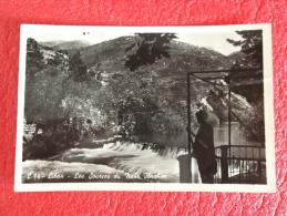 Liban Lebanon Les sources du Nahr Ibrahim 1955