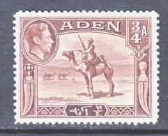 ADEN 17   *   CAMEL - Aden (1854-1963)