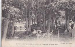 91 BOUSSY SAINT ANTOINE   Fermière  VACHES Au Pâturage Près La CHUTE D' EAU Du MOULIN NEUF Timbré 1908 - France