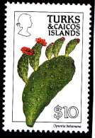 Turks Et Caïques N°889a Dentelé 12 - Neuf ** - Superbe - Turks & Caicos
