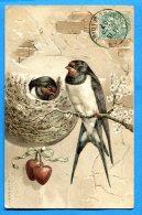 LIP080, Couple D'Hirondelles, Circulée 1907 - Vogels