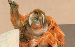 Postcard - Orang-Utan At San Diego Zoo. LM-15 - Monkeys