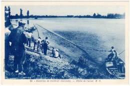 Environs De Barsac - Pêche à L'alose - France