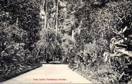 CEYLON - View Inside Peradeniya Garden  (Plate & Co Ceylon)  Used - Sri Lanka (Ceylon)