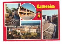 83 Carnoules Carte 4 Vues + Blason - Autres Communes