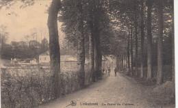 Linkebeek; La Drève Du Château (pk17316) - Linkebeek