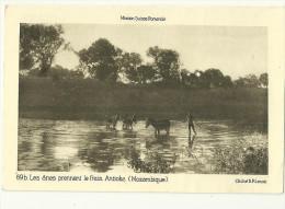 Theme Ane Cpa Mozambique Antioka Mission Suisse Romande - Ezels