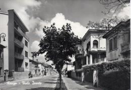 Veneto-rovigo-rovigo Veduta Viale Trieste Anni 50 (gr.-b.n.-v.gg.) - Rovigo