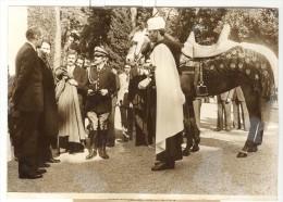 """Photo Ancienne """"VGE - Le Président Boumedienne Offre Un Cheval Au Président Giscard D´Estaing"""" 1975 - Personnes Identifiées"""