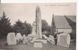 PLOZEVET 7020 MONUMENT AUX MORTS (MENHIRS) - Plozevet