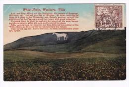 Carte Postale Angleterre White Horse Westbury Wilts Cheval British Empire Exhibition - 1902-1951 (Koningen)