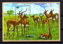 antilopes, BF 44 / 45**, cote 55 �,