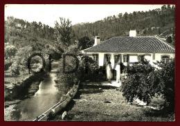 SARDOAL - UMA VISTA DA RIBEIRA DE ARECEZ - 1960 REAL PHOTO PC - Santarem