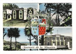 ÎLE  DE  LA  REUNION  /  SOUVENIR  DE  LA  REUNION  /  SAINT-JOSEPH  :  MAIRIE + HÔPITAL + LES  PENDANUS + ARMOIRIES... - La Réunion