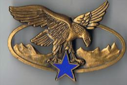 Médaille  Drago  Aigle Sur  étoile Bleue - Badges & Ribbons