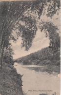RIVER SCENE - PERADENIYA / CEYLON - Sri Lanka (Ceylon)