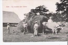 LA RENTREE DES FOINS 549 (ATTELAGE DE BOEUFS BEAU PLAN ANIME) - Landbouw