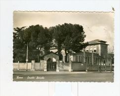 ROMA,Scuola Statale-1958 - Roma