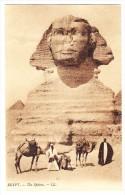 AK Ägypten Gizeh - Sphinx  - Belebt - Foto LL Ungebraucht - Gizeh