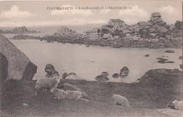 PLOUMANAC 'H     ( 22 )  Les Rochers Et Le Château Eiffel     ( Port Gratuit ) - Ploumanac'h