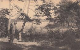 Westmalle, Sanatorium Lizzie Marsily, Zicht Op Het Zandoen (pk17521) - Malle