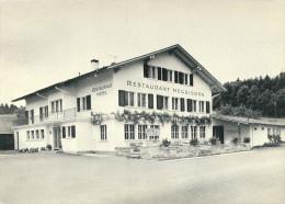 CPSM SUISSE MUHLEBERG HOTEL HEGGIDORN - BE Berne