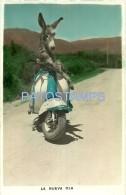 8555 ARGENTINA  BURRO DONKEY IN MOTO MOTORCYCLE SIAMBRETTA NO  POSTAL POSTCARD - Argentina
