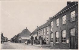 Reningelst, Vlamertingestraat (pk17546)