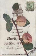 CPA TURQUIE LIBERTE EGALITE JUSTICE FRATERNITE 11/24 JUILLET 1908 - Turchia