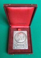 Médaille - Nominative - De La Société Amicale Et De Prévoyance De La Préfecture De Police - Professionali / Di Società