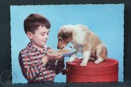 Vintage Children Topic Postcard - Small Boy Feeding His Little Dog - Groupes D'enfants & Familles