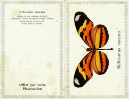 Calendrier Petit Format, Année 1966, Offert Par Votre Pharmacien, Papillon Heliconius Narcaea Du Brésil - Petit Format : 1961-70
