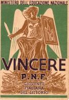 ITALIA   Storia  Postale   Regno   Pagella  Vinceremo   A.  XX - Italia