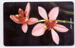 SIERRA LEONE   PHONECARD FLOWERS ORCHID  50UNITS-USED(5)