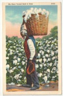 My Heart Turned Back To Dixie - Cotton Picking - Black Americana